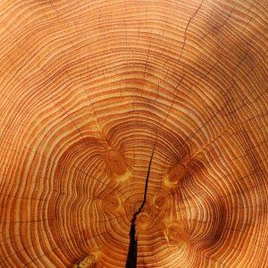 Standard Holzarbeiten